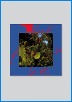 Feel Live (Album)