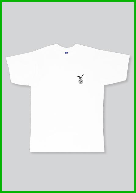 Main_296_hwsd_eagle